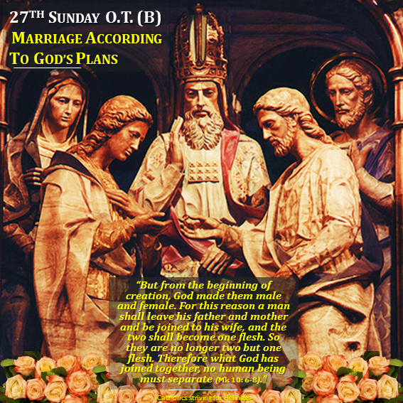 27th sunday of ot b marriage according to gods plans 27th sunday of ot b indissoluble marriage fandeluxe Gallery