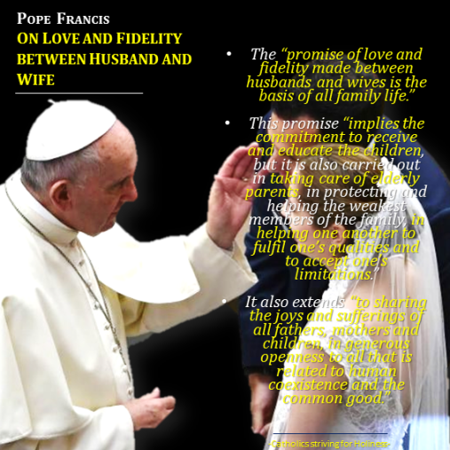 Pope Francis on love and fidelity bet. husband and wife