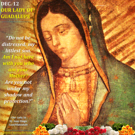 Advent 5 - Our Lady of Guadalupe