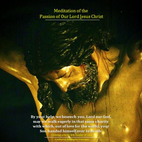 Meditation on the Passion