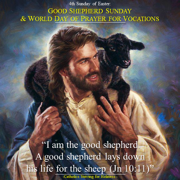 4th Sunday of Easter. Good Shepherd