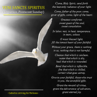 "HERE'S A BEAUTIFUL PRAYER TO THE HOLY SPIRIT:  ""Veni Sancte Spiritus"" (Come, Holy Spirit)."
