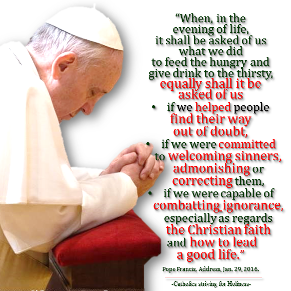 Pope Francis.Combat ignorance