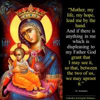 ASK OUR LADY FOR THE GIFT OF CONTRITION AND FOR THE HELP TO BRING YOU CLOSER TO GOD.