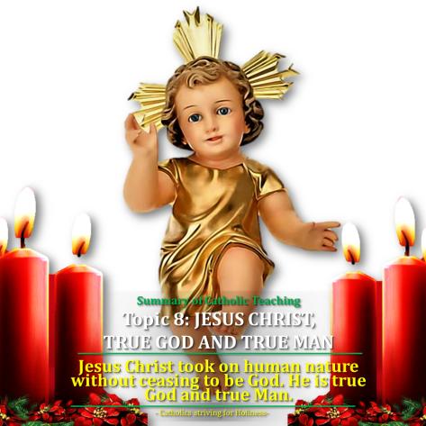 topic-8-jesus-true-god-and-true-man