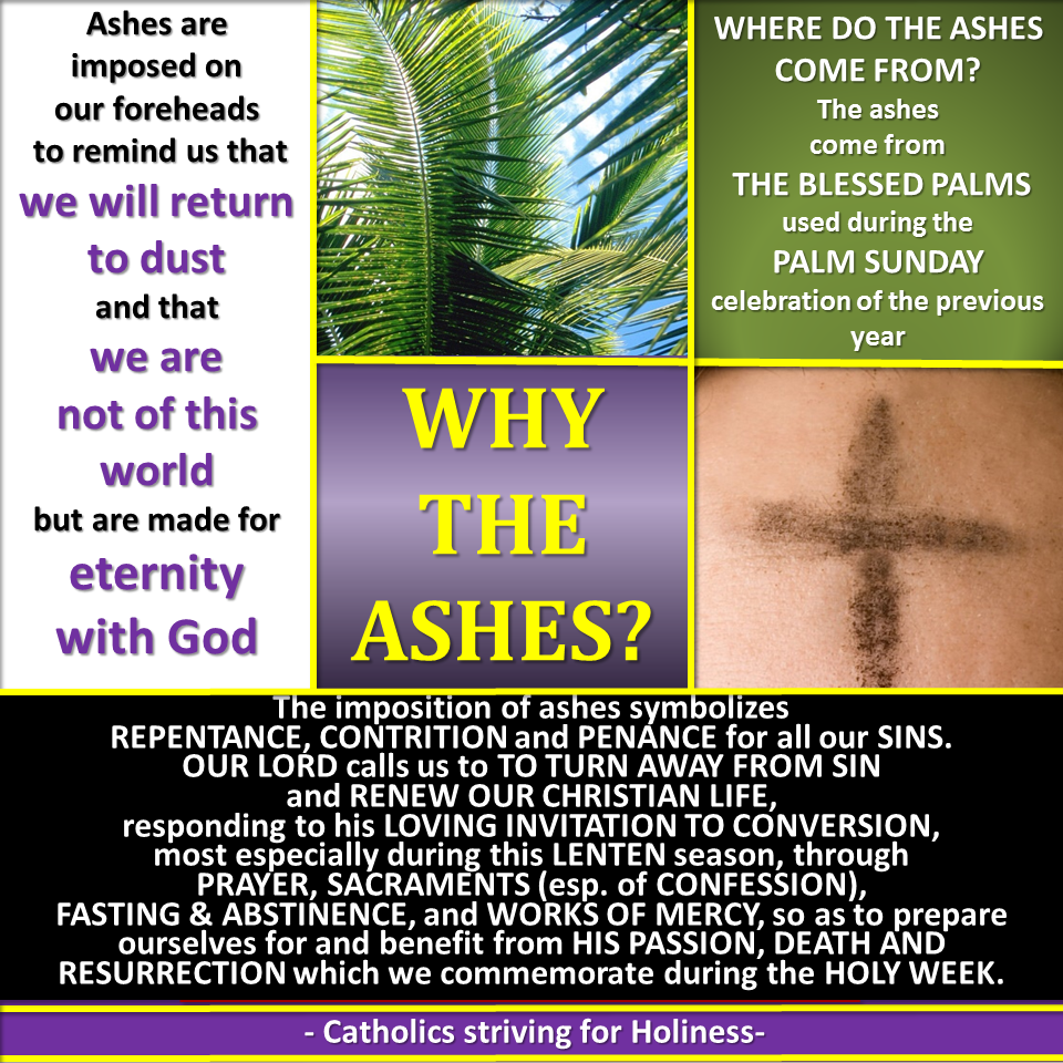 Ash Wednesday Infographic Why The Ashes Catholics Striving For