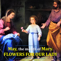 MAY, THE MONTH OF MARY. FLOWERS FOR OUR LADY. Summary vid + full text.