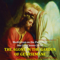 Meditation on the Passion of  Our Lord Jesus Christ (1): THE AGONY IN THE GARDEN. Reflection vid + full text.