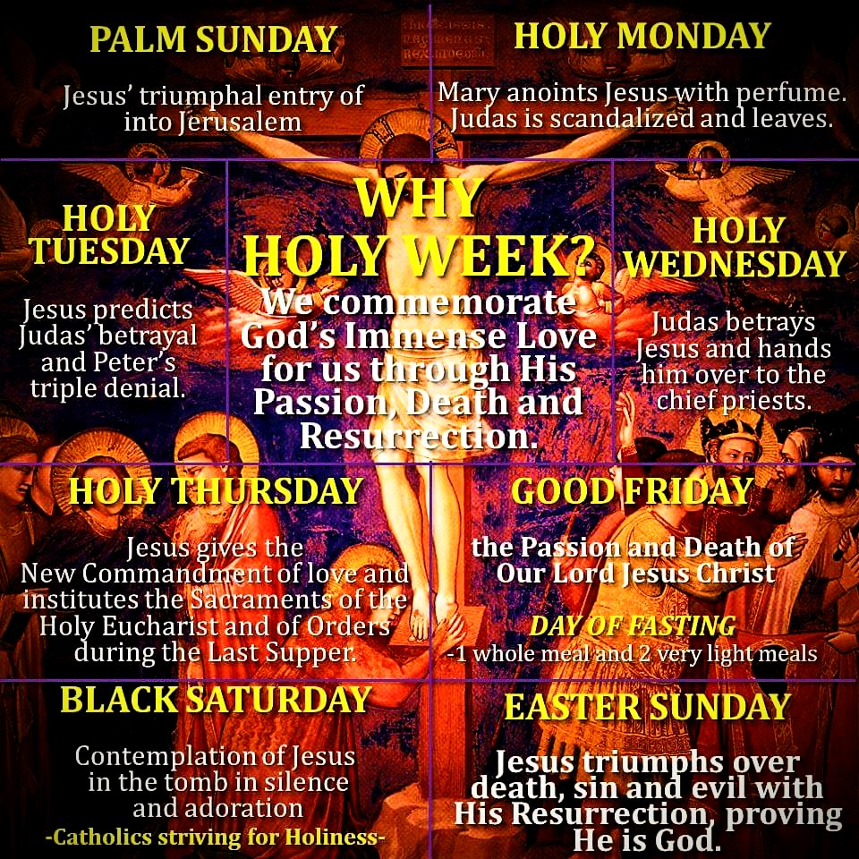 """WHY IS HOLY WEEK CALLED """"HOLY""""? – Catholics Striving for Holiness"""